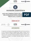 Informe Policía Federal Gasolinazo