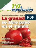 Revista Agro & Exportación N° 37