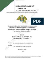 Tandaypan Rodriguez, Hipolito -Tesis
