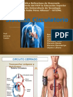 sistema circulatorio.pptx