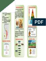 TRIPTICO DE LOS INCAS - 2.pdf