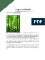 sintomas de dificiencia de  nutrientes de las plantas forestales.docx