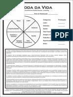 Coaching - Roda da vida.pdf.pdf