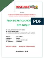 Plan Articulacion Nec Roque