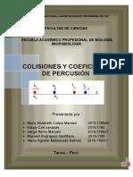 COLISIONES-Y-COEFICIENTE-DE-PERSECUCIÓN-MARIA yo.docx