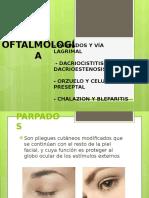 Clase 3 Parpado y via Lagrimal
