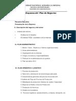 Estructura Plan de Negocios 2012