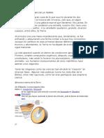 EVOLUCION Y ORIGEN DE LA TIERRA.docx