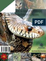 MANUAL DE ACCESS 2010.pdf