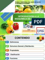 Int. a la Bioquímica de Alimentos. Carbohidratos