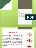 W Plastia y Z Plastia