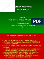Prosedur Nekropsi Kuda 2011