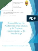 Generalidades de Malformaciones Nasales y Tumores Nasosinusales y de Nasofaringe