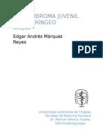 Angiofibroma juvenil nasofaringeo
