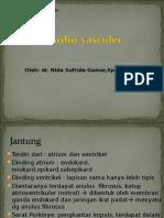 Cardio Vasculer