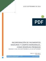 Incorporación de Yacimientos Maduros y Campos Marginales