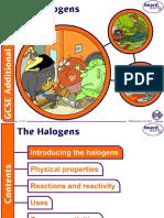 13. The Halogens v1.0.ppt