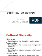 Soc Ch 2 Sect 2 CULTURAL Diversity Ppt Two Craig