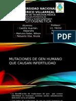 Citogenética PDF 14 A-B-C