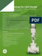 Antisurge Valves for LNG Market