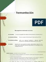 Microbiología Enológica - Fermentaciones (FA y FML)