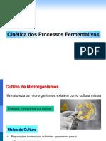 Aula 10 - Cinética Dos Processos Fermentativos