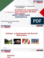 ENFOQUE_ORGANIZACION_MATEMATICA