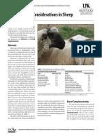 Crossbreeding Considerations Sheep