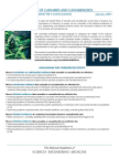 Conclusions from NAS report The Health Effects of Cannabis and Cannabinoids Conclusions