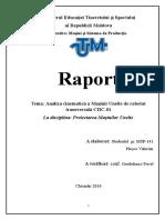 Raport Proiectarea MU