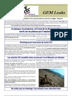 2017 01 Gem Leaks-web