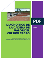 Diagnostico Cacao