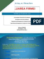 Farcas Doru, Evaluarea Firmei. Teorie Si Studii de Caz