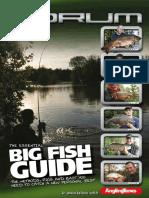 Big Fish at Guide