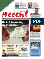 Accent 497
