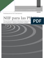 NIIF PYMES - FUNDAMENTOS PARA LAS CONCLUSIONES