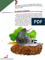 La Paloma Testaruda. Lecturas Primaria
