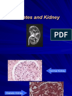 Diabetes and Kidney