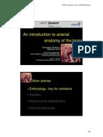 2016-09 EANS Meeting Brain Vascular Anatomy CDestrieux