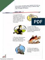 Sabias Qué Sobre Animales. Lecturas Primaria