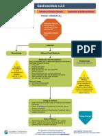 Gastroschisis Pathway