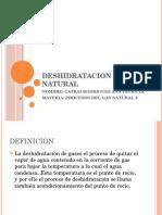 Patricia Deshidratacion Del Gas Natural