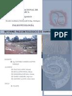 Informe de Pampa de La Culebra 1000 %