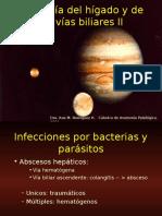 patologiahepatica2