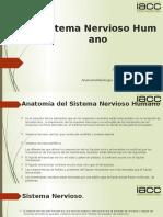 Anatomofisiologia Humana y Primeros Auxilios Tarea 4