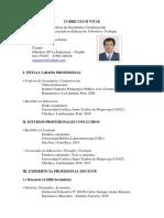 08-01-2017  CV Profesor