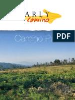 Camino-Plus-Tour-Español