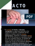 eltacto-120528163645-phpapp02