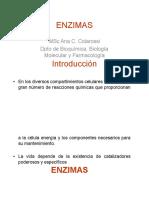 Enzimas  y cinetica enzimatica.docx