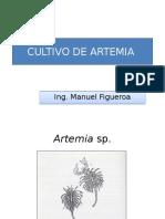 Artemia.pptx